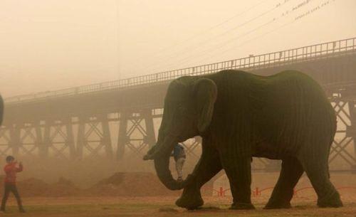 Dust-Khuzestan21.jpg