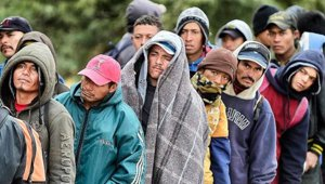 mexican_migrant_workers_in_line_small.jpg
