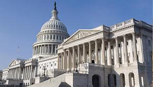 senate-small01.jpg