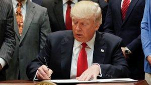 Trump_immigration_plan_111317.jpg