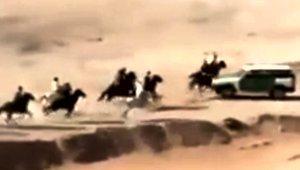 horse_raceAccident_111617.jpg