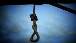 hanging_021318.jpg