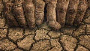 drought_022718.jpg