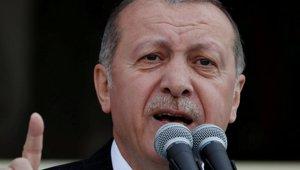 turkey_051318.jpg
