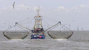 fishing_081818.jpg