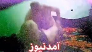 amad_081919.jpg