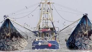 fishing_122519.jpg